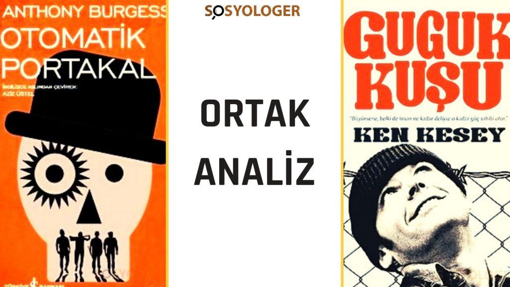 guguk-kusu-otomatik-portakal-analiz