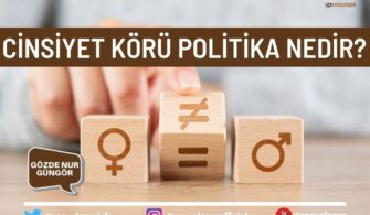Cinsiyet Körü Politika Nedir?