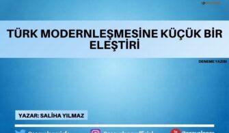 Türk Modernleşmesine Küçük Bir Eleştiri