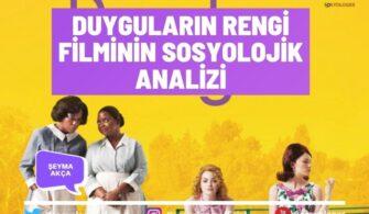 Duyguların Rengi Filminin Sosyolojik Analizi