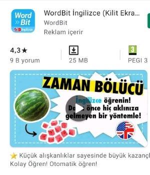 Wordbit